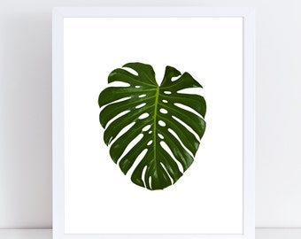 Monstera Print, Botanical Poster, Plant Photography, Leaf Printable, Tropical Plant, Large Wall Art, Instant Download, Modern Minimalist.