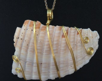 Gold Wire Wrapped Seashell Pendant