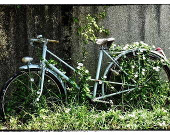 My Old Blue Bicycle ...  © gary lornie photography.