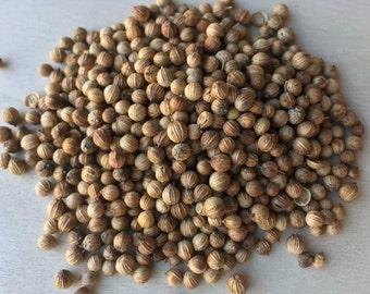 Coriander Seed, Coriandrum sativum (Whole) ~ Sacred Herbs and Spices from Schmerbals Herbals