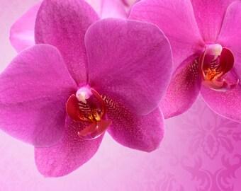"""Ceramic Tile Magnet 3"""" x 3"""" Larger Pink Flower"""