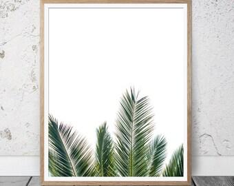 Fern print, palm leaf print, botanical print, leaf print, palm print, palm tree, tropical poster, botanical art, tropical leaf, fern art