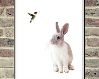 Humming Bird And Rabbit, Digital Poster, Nursery Printable, Colibri, Bunny Poster, Nursery Animal Print, Animal Print, Animal Face Print