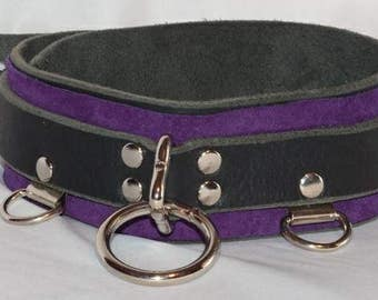 Leather Collar with a Splash of Color - Regular
