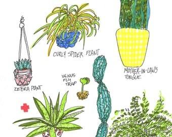 Plant Friends!