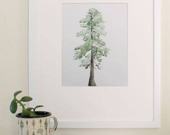 Digital Print of Loblolly Pine Tree Original Watercolor and Ink Painting