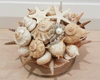 Shell display with pearl shells, horned starfish, pearls on a glass base