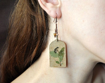 Cardboard earrings  with herbarium of flowers. Dangle earrings. Eco. Handmade. Herbarium.