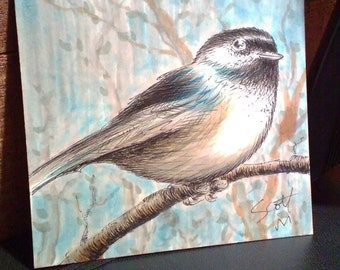Black-Capped Chickadee, original one-of-a-kind Oregon bird illustration