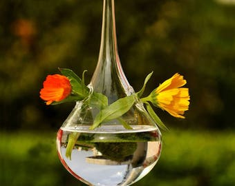 Clear Water Drop Glass Hanging Vase Bottle Terrarium Container Plant Flower DIY Table Wedding Garden Decor