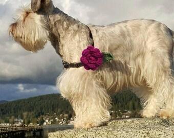 Collar Flower, Cat Collar Flower, Dog Collar Flower, Wedding Accessory, Dog Collar Decoration, Collar Attachment, Crochet Rose, Collar Rose