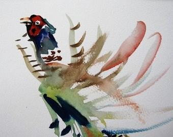 Pheasant Display/Pheasant Watercolour
