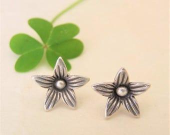 Silver Jewellery. Silver earrings. Silver earrings. Jewelry of silver.