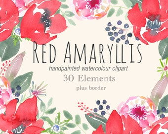 Watercolour Clip Art - Mary Amaryllis Elements