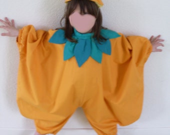 Disguise kids pumpkin, ref: h5, size 3/4 years.