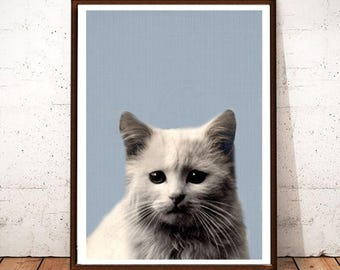 Cat Photo, Wall Art Print, Printable, Black and White Animal Photography, Modern Minimal, Instant Download, Nursery Decor Grey