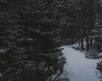 Rural / fine art / photography / print / nova Scotia / winter / nature