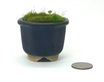 A Vintage small planter - Made in Japan - A miniature zen garden - 1970s- Octagon
