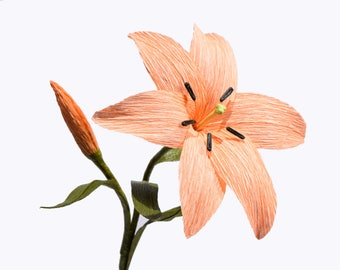 Crepe Paper Lily, Peach - Single Stem