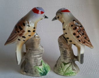 Woodpecker ''Flicker'' Ceramic Salt & Pepper Shakers, Japan, c.1960