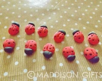 Ladybird 3D Card Making Embellishments Handmade Foam Ladybug Scrapbooking Paper Craft Supplies