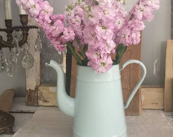 French Vintage Enamel Coffee Pot in light aqua and dark green color