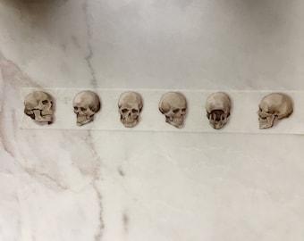 FREE SHIPPING - Skull Washi Sample