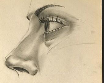 Female Eye & Nose