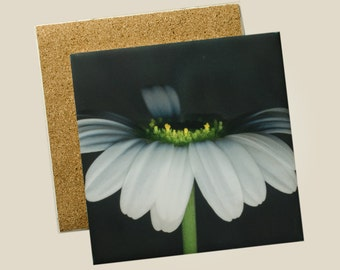 5.9x5.9 inch ceramic tile trivet - Edge of Daisy Flower Photo