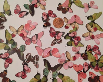 Small Paper Realistic Butterflies (pink and green) - Variety - 9 different Species - 25 pieces - Printed - Cardstock