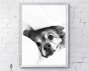 Puppy Love   Eco-friendly Printable Art Instant Download. Black and White Modern Minimalist Print. Animal Wall Art Poster.