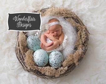 Newborn Digital Background/Robin Eggs and Nest/Natural Wool/Moss