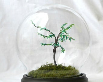 Tree paper under glass globe