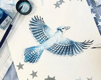 Original watercolor Blue Jay bird
