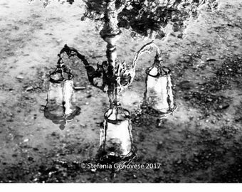 Reflections/Photo Print-Giclee Print