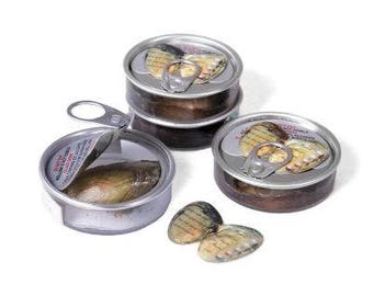 Set of 5 Pearl Oysters in Can