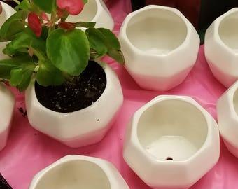 ceramic mini succulent pot