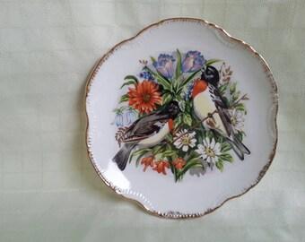 Bird plate decorative uc&gc rose-breasted Grosbeak