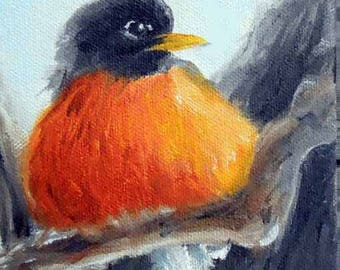 "Robin Bird Art Print from Oil Painting by Artist Robin Zebley, 8"" x 10"", American Wildlife"