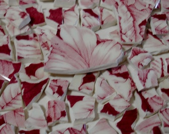 Mosaic Tiles Pink & Red Toile Transferware Broken Plate-Tesserae Pieces
