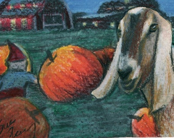 original art  aceo drawing goat and gnome in pumpkin patch fall humor