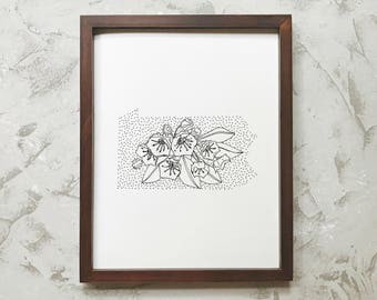 Pennsylvania> Mountain Laurel> State Flower Drawing> Giclee Print