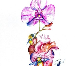 """Watercolor Anatomical Heart, Orchid Painting, 11""""x15"""""""