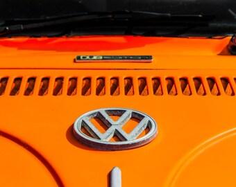 Volkswagen Beetle Decal Detail Car Photography, Automotive, Auto Dealer, Muscle, Sports Car, VW, Mechanic, Boys Room, Garage, Dealership Art