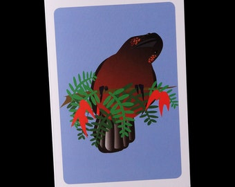 Greeting Card - Kaka - single card