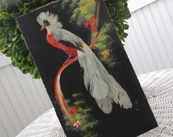 Vintage Bird Painting * Mid Century * Feathercraft * Mexico