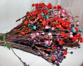 Ammobium flowers Assorted colors in a large bundle-Pink-Red-Purple-Aqua-Dried floral