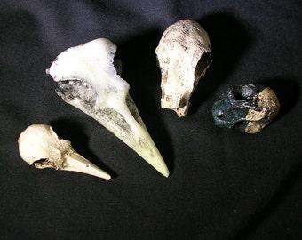 Boner Bag 2 replica skull bone assortment bork bones miscast irregular