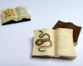 Miniature Open Book --- Serpent