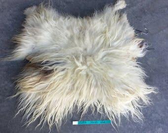 Icelandic Sheepskin- Badger Moorit and SUPER Long Wooled Sheep Hide Lot No. 25253TURQ